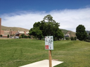 Teeing Area at University of Utah Disc Golf Course