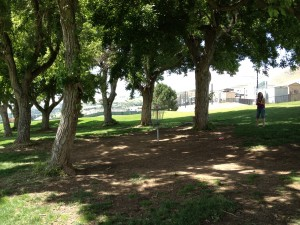 Basket #6 - University of Utah Disc Golf Course